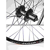 Momentum Bezerk FR/Deore 26 Disc Wheel: Rear.