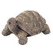 Einstein the Realistic Resin Tortoise Garden Ornament