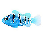 Robo Fish LED - Blue Beacon