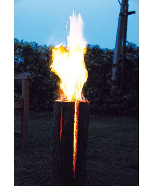 Crocus Fire log