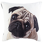 Novelty Pug Face Cushion