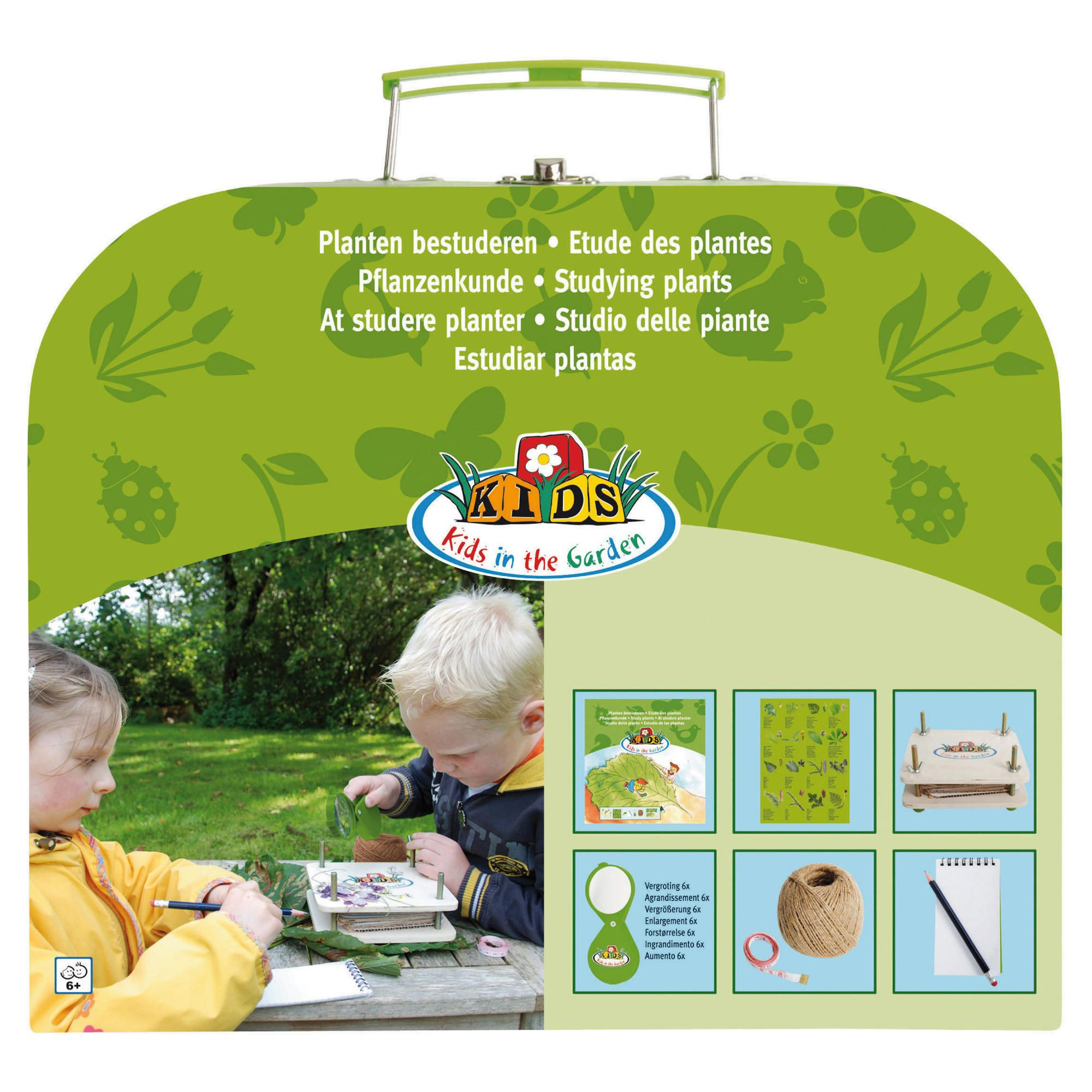 Offerta: Fallen Fruits Discovery Box (Studying Plants)