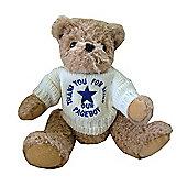 Pageboy Wedding Bear with Cream Jumper and Blue Star