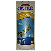 Acti Algicide 6 pack x 1 litre for swimming pools