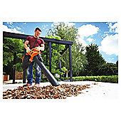 BLACK+DECKER GW2500 240v Leaf Blower & Vacuum