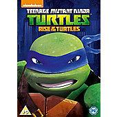 Teenage Mutant Ninja Turtles Season 1 Volume 1 DVD
