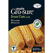Sweet Corn Lark F1