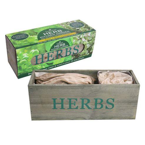Greena Kitchen Garden Herb Planter