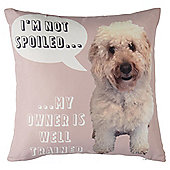 Novelty Cockerpoo Cushion