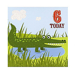 Jungle Friends Boys 6th Birthday Card