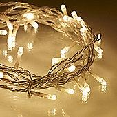 40 Warm White LED Indoor Fairy Lights