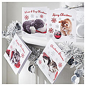 Tesco Cute Kitten Christmas Cards, 20 Pack