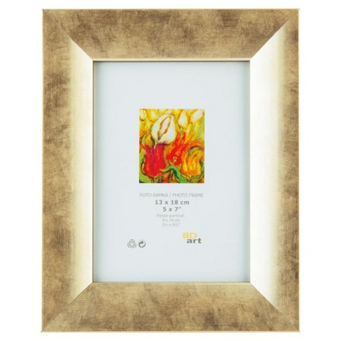 Tesco Champagne Gold Frame 5