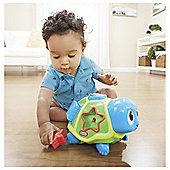 Crawl n Pop Turtle