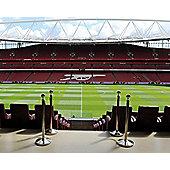 Adult Emirates Stadium Tour for Two