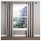 Faux Silk Lined Eyelet Curtains - Silver