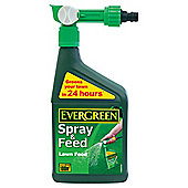 Evergreen Spray & Feed Lawn Food