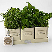Burgon and Ball Herb Pots Sitting In Tray, Jersey Cream