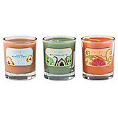 Pacifica Soya Candle Fig, Orange & Tibetan Gift Set