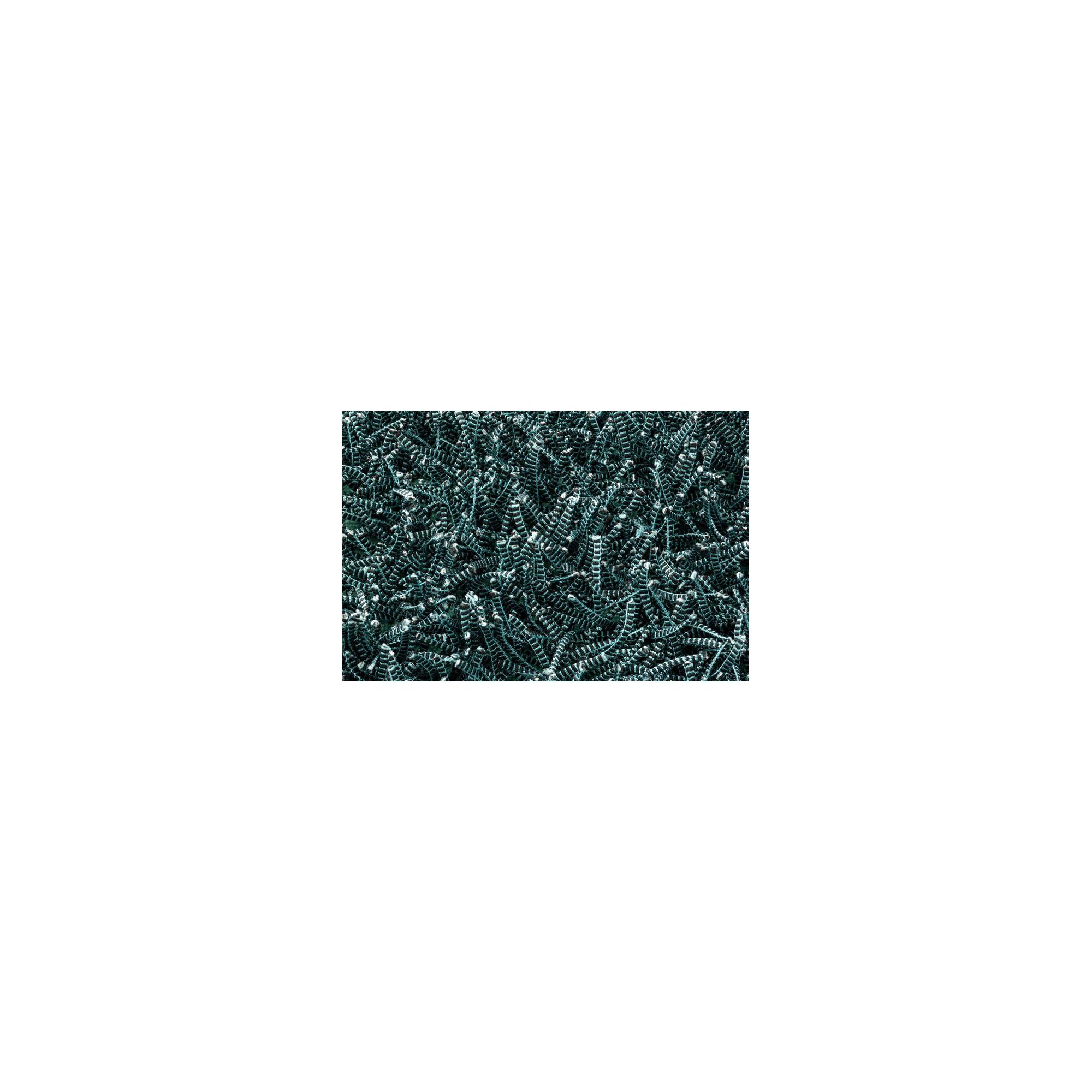 Linie Design Electric Turquoise Shag Rug - 300cm x 200cm at Tesco Direct