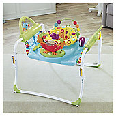 Fisher-Price Step 'n Play Jumperoo