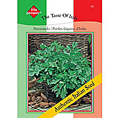 Parsley 'Prezzemolo Gigante d'Italia' -Vita Sementi® Italian Seeds - 1 packet (6600 seeds)