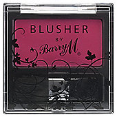 Barry M Blusher 4 - Raspberry
