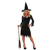 Wicked Witch - Adult Costume Size: 6-8