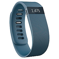 Fitbit Charge Slate Large