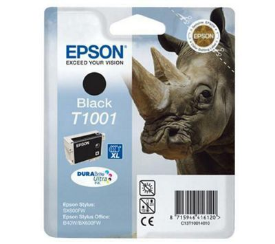 Epson T100140 printer Ink Cartridge - Black