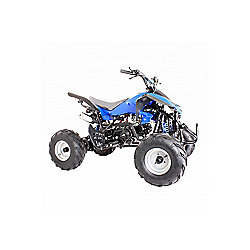 125cc 4 Stroke Quad Bike with Reverse Blue