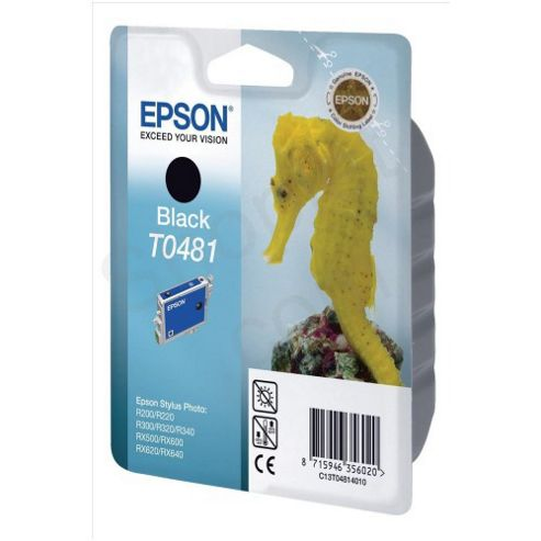 Epson Singlepack Black T0481 Ink Cartridge