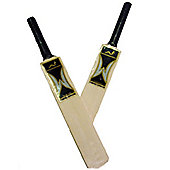 New Woodworm Hard Drive Autograph Mini Cricket Bats