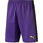 Puma Tournament Goalkeeper Short - Violet