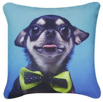 Blue Chihuahua Green Bow Cushion Photographic Style