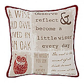 Catherine Lansfield A wise old owl Cushion Cover - 43x43cm