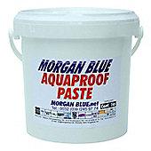Morgan Blue Aqua Proof Paste (1000cc)