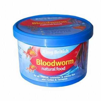 King British Bloodworms Freeze Dried 9g