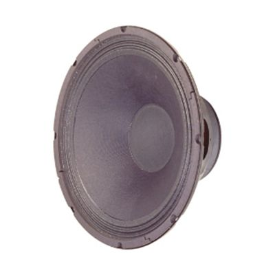 300mm (12In) 250W General Purpose Power Speaker