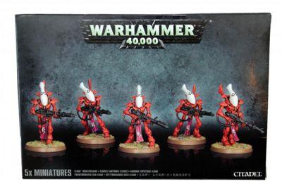 Warhammer Eldar Wraithguard Model Kit