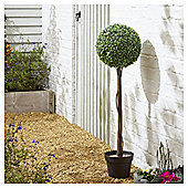 Artificial Single Boxwood Ball Tree