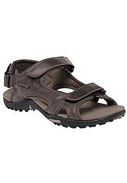 Regatta Mens Haris Walking Sandal - Brown