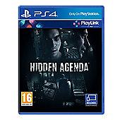 Hidden Agenda (A Playlink Title)