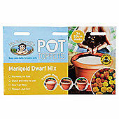 Mr Fothergill's French Marigold Dwarf Double Mix Flower Garden Plant Pot Topper