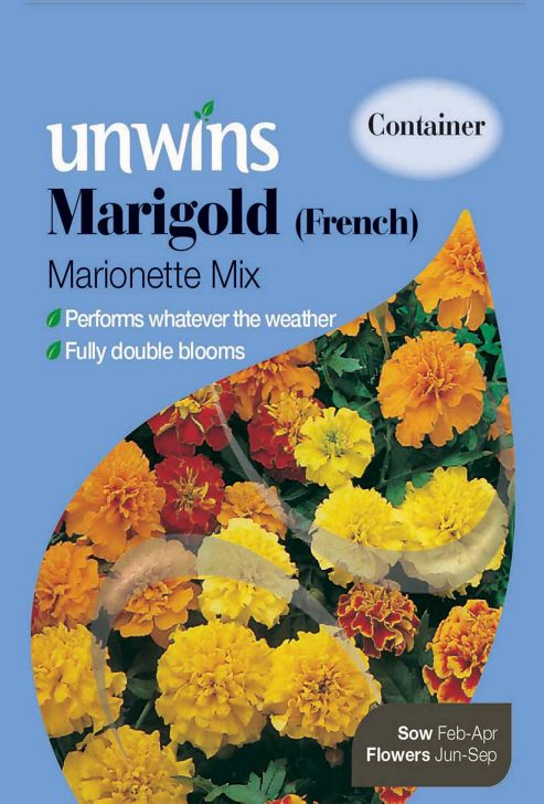 Marigold French Marionette Mixed
