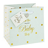 Beautiful Baby Boy Gift Bag