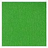 Canson Superior Crepe Paper 50cm x 250cm Bright Green