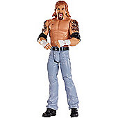 WWE Superstar Diamond Dallas Page