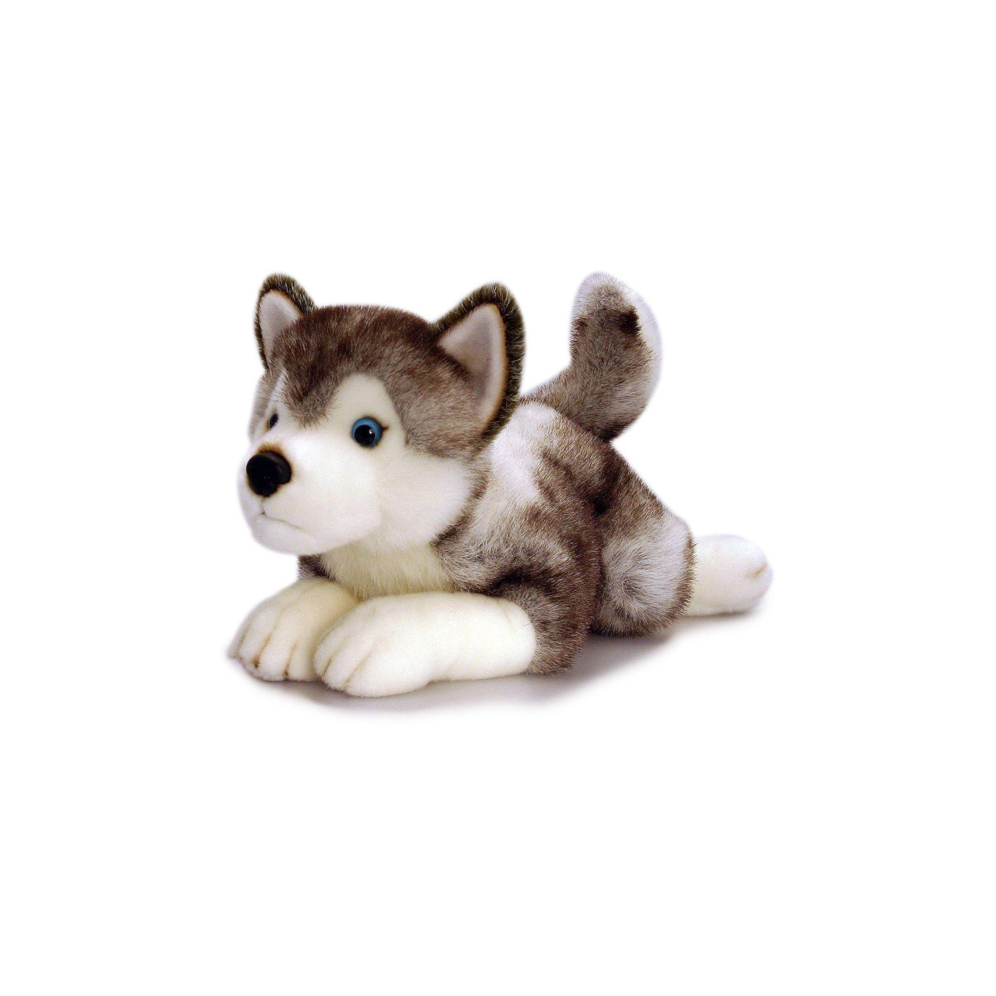 0780bca4dbd Keel Toys Storm Husky Soft Toy Dog – 50cm