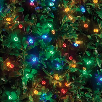 Lightware 240 LED Solar String Lights   Multi